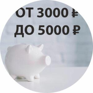 От 3000 ₽ до 5000 ₽